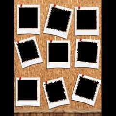 polaroids freetoedit