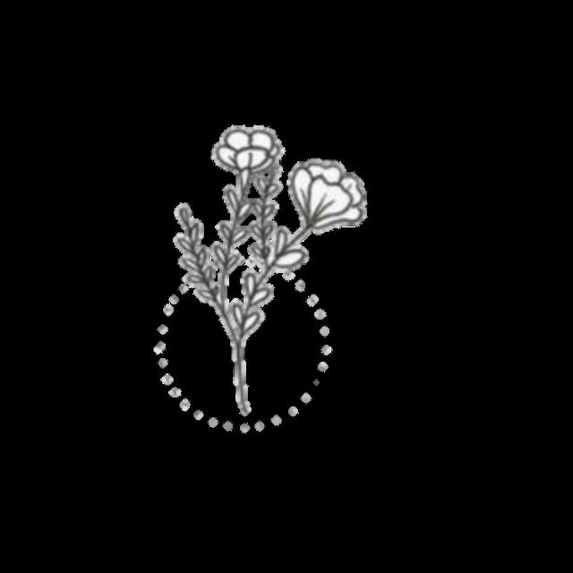 #doodle #doodles #artline #overlays #vintage #flower #editing