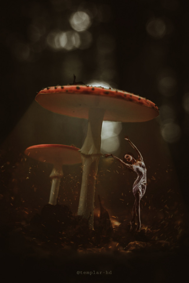 Dancing under the mushrooms #digitalart #templarhd #surreal #nature #freetoedit