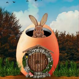 freetoedit irceggdecoration eggdecoration egg door