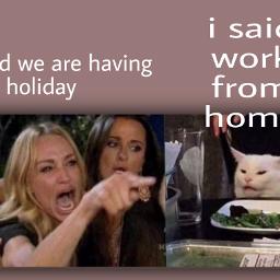 freetoedit memes meme memesquarantine quarantinememes