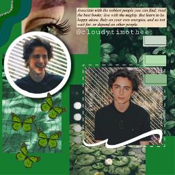 timotheechalamet timmy timothee ladybird callmebyyourname freetoedit