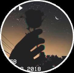 pinterest night darkrose aesthetic aestheticcircle freetoedit