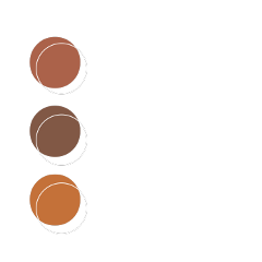 brown pallette pallete colorpalette aesthetic freetoedit