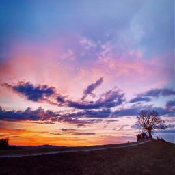 sunset background cloud sky tree