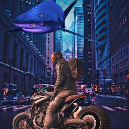 freetoedit biker shark buildings city