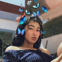freetoedit butterfly butterflies butterflys butterflyeffect