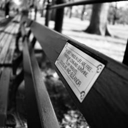 centralpark bench love blacknwhite photography freetoedit
