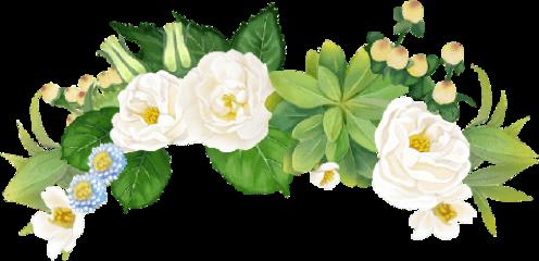 crown flower roses flowercrown white freetoedit