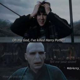hogwarts dracomalfoy harrypotter hermionegranger lordvoldemort