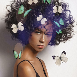 freetoedit butterflies butterfly hairstyle style