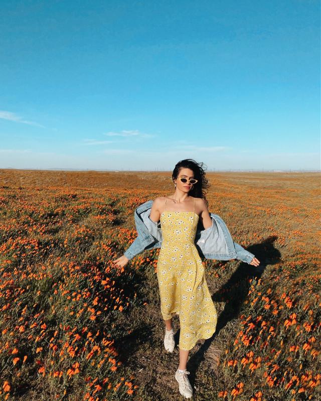 I LOVE NATURE 😍 #california #poppyflower #summer #sky #photography #people #freetoedit #nature