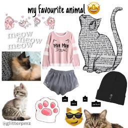 freetoedit cats meow edit milocat