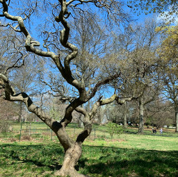 photography shapes fairmountpark philadelphia socialdistancing