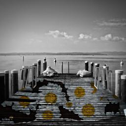 lake water summer colorful yellow ecfloralpaper floralpaper