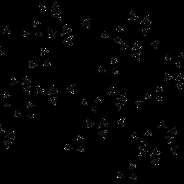 #Sasuke #Itachi #itachiuchiha #akatsuki #mangeku #sharingan #Итачи #Саске #мангеке #Мангёку #шаринган #учиха #фонучиха #Наруто #вороны #фон #фонвороны #фоннаруто #фонитачи