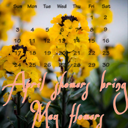 freetoedit spring may calender2020 flowers daylight
