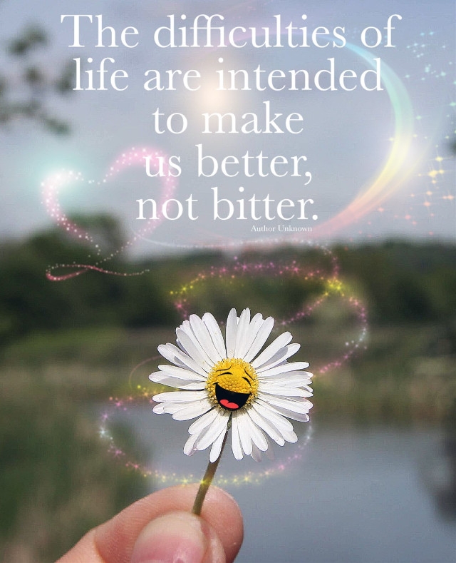 Have a safe and awesome day #daisy #flower #nature #stickers #happiness #quotesandsayings #freetoedit