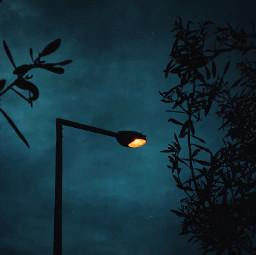 twilight streetlight dark mobilephotography