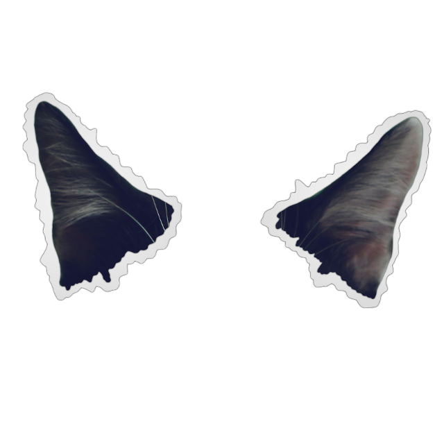 #aesthetic #paper #cat #createfromhome #Freetoedit #Ftestickers #Remixit #Meeori ••••••••••••••••••••••••••••••••••••••••••••••••••••••••••••••• Sticker and Wallpaper Design : @meeori  Youtube : MeoRami / Meeori İnstagram : Meeori.picsart ••••••••••••••••••••••••••••••••••••••••••••••••••••••••••••••• Png • cute • Kawaii • Color • Colorful • Picsart Freetoedit • Ftestickers Remix • Remixit ••••••••••••••••••••••••••••••••••••••••••••• @picsart •••••