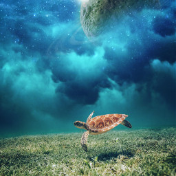 surreal photomanipulation underwater edited blending freetoedit