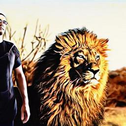 cartooneffect painteffect safariadventure lion spendingtime