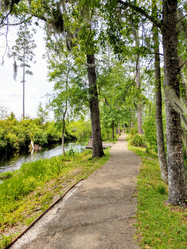 Nice long walk - #freetoedit #outdoors #nature #naturelove #hiking #trail #adventure #myphoto #stayinspired  #happy #happiness #spring #woods #forest #travel #river #riverside #photography #sunnyday #sunny