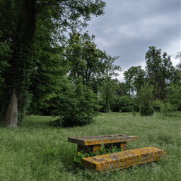 nature grass photography bench france freetoedit