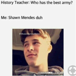 shawnmendes memes shawnmendesmemes shawn mendes freetoedit