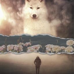 freetoedit floralpaperchallenge wolf person floralpaper ecfloralpaper