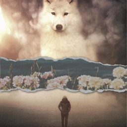 freetoedit floralpaperchallenge floralpaper wolf person