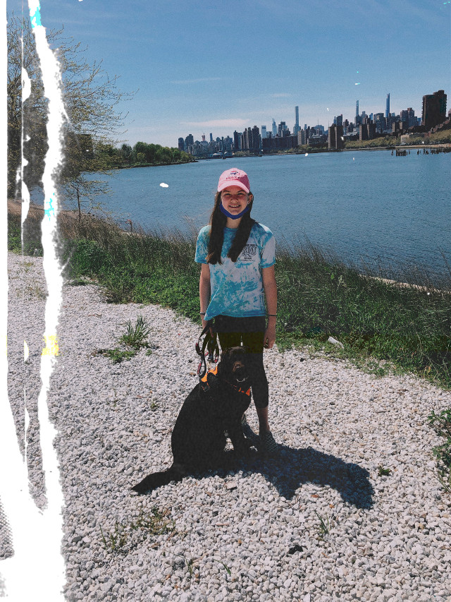 *********OPEN ME******** Quarentine adventures 😔 and yes, i have a mask around my neck dont worry. At randalls island next to manhatten with my pupper. #newyorkcity #chocolatelabrador