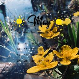 freetoedit may calander yellow rain srcmaycalendar maycalendar maycalender