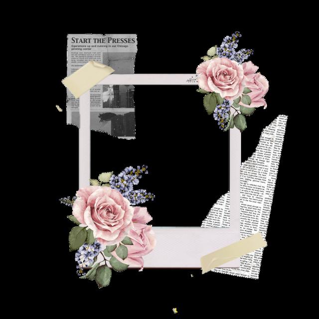 #freetoedit #aesthetic #vintage #cute #flowers #polaroid