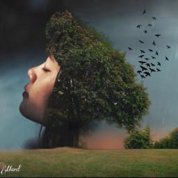freetoedit stillness ircstillness