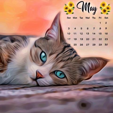 #freetoedit,#mybirthdaymonth,#catlove,#srcmaycalendar,#maycalendar