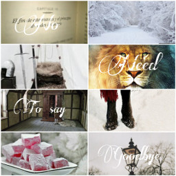 aesthetic college thechroniclesofnarnia narnia lucypevensie