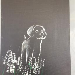 paiting dog draw