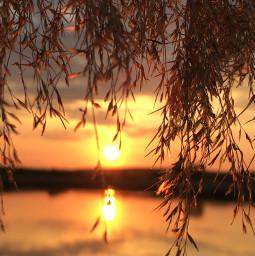 photography nature evening sunset freetoedit