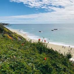 lagunabeach california beachlife