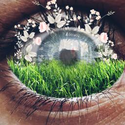 freetoedit picsart tools surreal doubleexposure ecflowereyes flowereyes