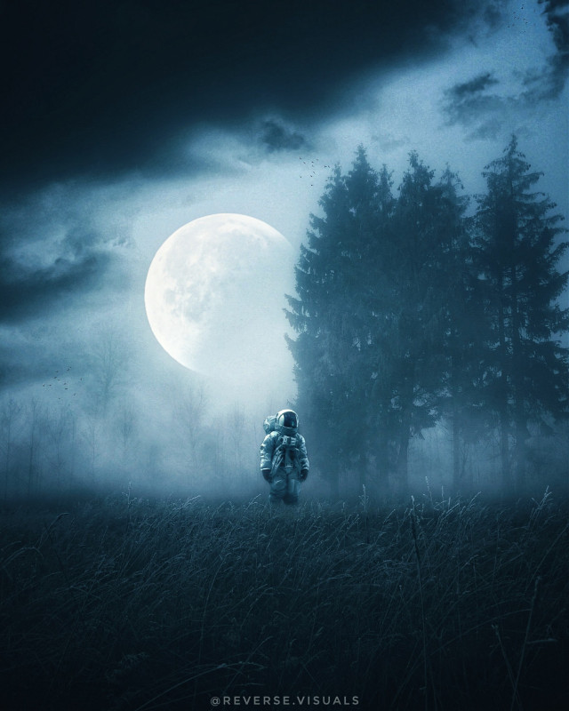 Exploration II  Op by unsplash #picsart #madewithpicsart #edit #visual #fantasy #surreality #spaceart #astronaut #forest #moon
