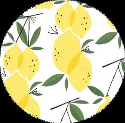 sticker lemons yellow green white freetoedit