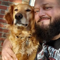 ogb onlygetsbetter goldenretrievers dogs puppies