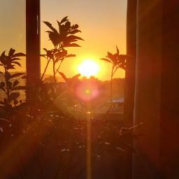 freetoedit window sunset yellow pcwindow