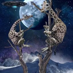 ufo giraffes alienized editedwithpicsart notfreetoedit