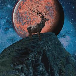 freetoedit remixit remixed mountain deer