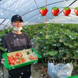 btssuga minyoongi strawberry btsarmysforever