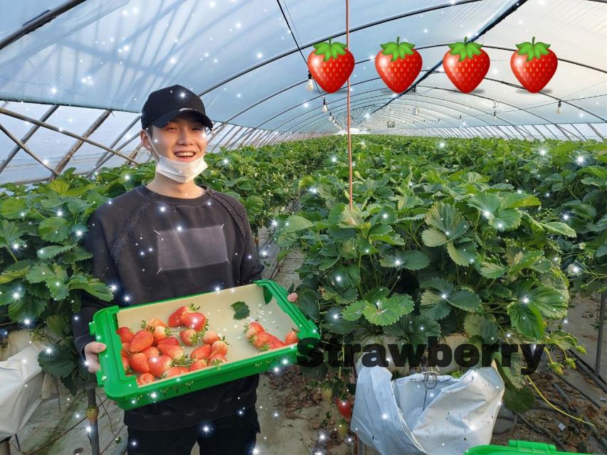 #btssuga#minyoongi#strawberry#btsarmysforever