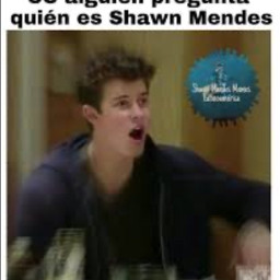 bringbackthecomments shawnmendes shawnpeterraulmendes shawn peter freetoedit